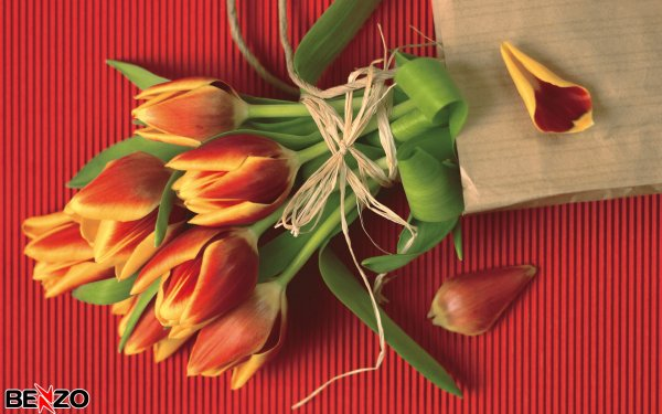 Поздравляем вас с наступающим праздником! С 8 марта!